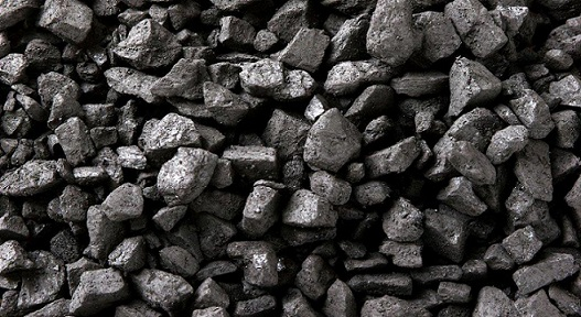 Joint Working Group on Coal