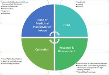 Consortia for Medicinal Plants